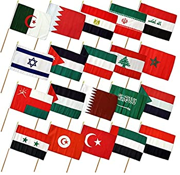 Set of 20 Middle East 12 x18  Stick Flags