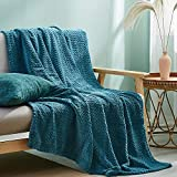 Simple&Opulence Solid Coral Jacquard Dot Velvet 50 X 60-Inches Throw Blanket, Blue