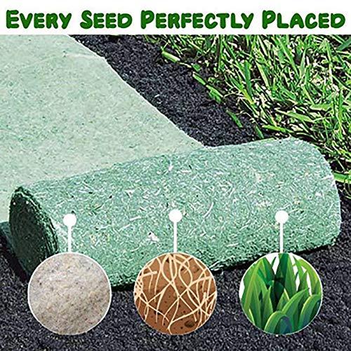 10 M * 0,2 M Almohadilla de Semillas de césped Biodegradable Manta ecológica de jardinería Almohadilla de degradación Alfombra de Semillas Césped de Campo Deportivo