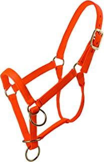 TrailMax Packer's Halter, Intended for Horse and Mule Packing, Featuring Triple -Thick Nylon Webbing and Heavy Duty Hardware, Available in High-Vis Hunter's Orange Or Brown and Two Sizes