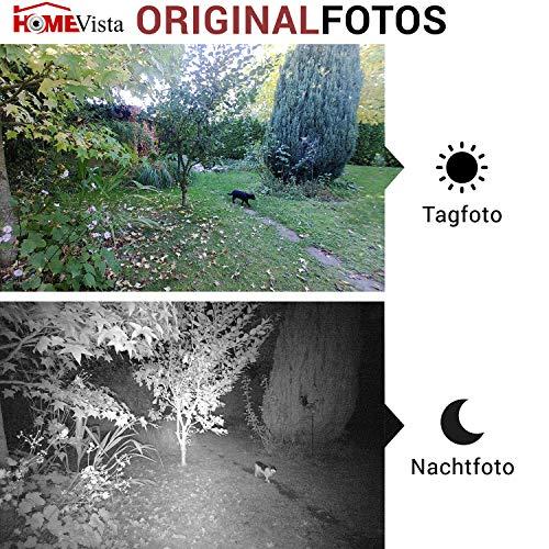 SecaCam HomeVista Full HD Grandangolare 100° Camera di sorveglianza e camera da caccia | Fototrappola – Premium Pack, Visione notturna