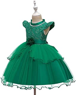 Luxury Children's Day Flowers Butterfly Princess Dress Birthday Party Dress Lovely Princess Dress Flower Girl Dress Costumes ryq (Color : Green, Size : 100cm)