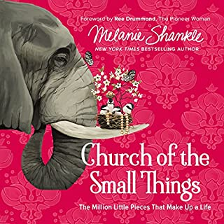 Church of the Small Things audiobook cover art