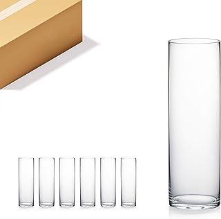 "WGV Cylinder Vase Bulk, Diameter 5"", Height 16"", Clear Glass Floral Planter.."
