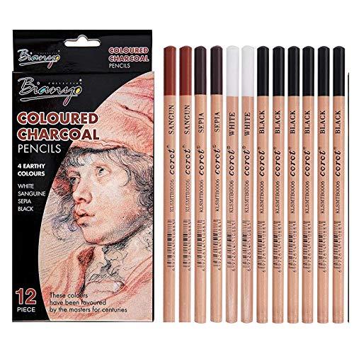 12 Pezzi Carboncino Matita Colorate,Set di Matita Colorate Professionale di Disegno,4 Colori 3 Durezze,Matite Da Schizzo,Kit da Matite Disegno per Artista Principianti Bambini Adulti