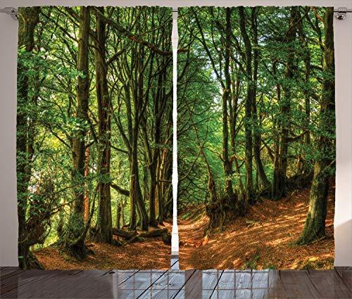 ABAKUHAUS Wald Rustikaler Vorhang, Waldweg-Szene, Wohnzimmer Universalband Gardinen mit Schlaufen und Haken, 280 x 260 cm,