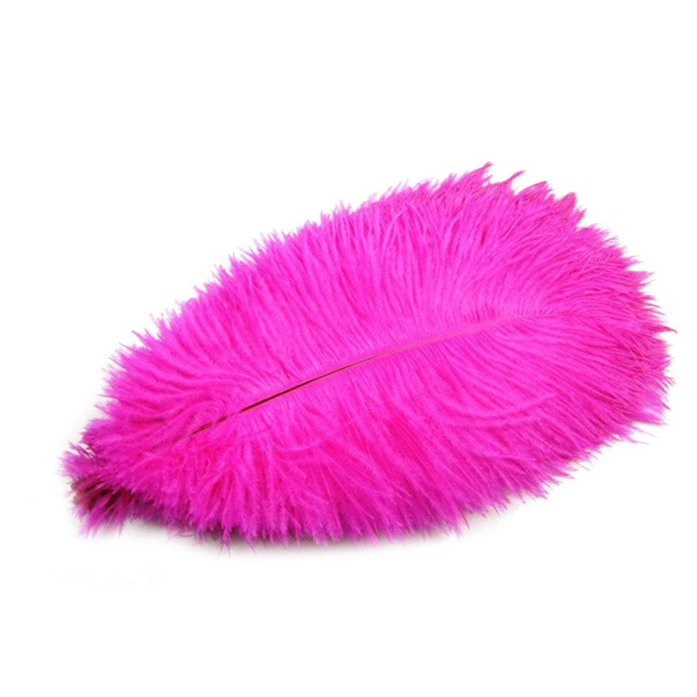 Flyusa 20pcs Ostrich Feathers 10-12 inch(25-30cm) Real Natural DIY Craft Feathers for Home Wedding Decoration Hot Pink