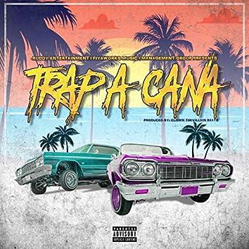 Trap-a-Cana