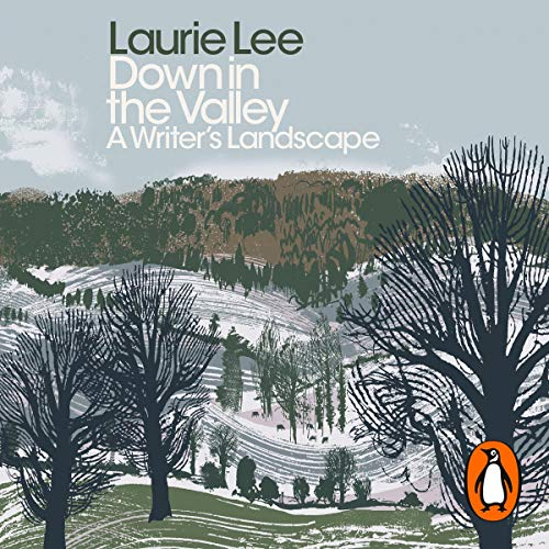 Down in the Valley audiobook cover art