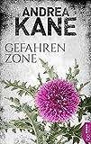 Gefahrenzone (Romantic Suspense der Bestseller-Autorin Andrea Kane 5)