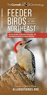 Feeder Birds of the Northeast: A Folding Pocket Guide to Common Backyard Birds (Wildlife and Nature Identification)