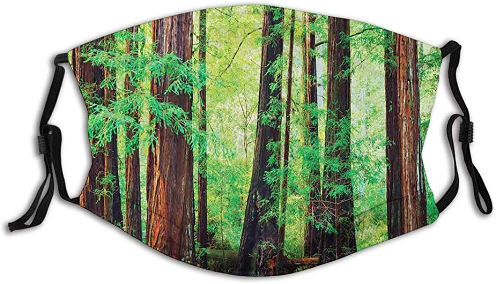Redwood Trees Northwest Rain Forest Tropic Scenic Wild Mouth Cover for Women,Face Mask Reusable Washable Cloth for Adult