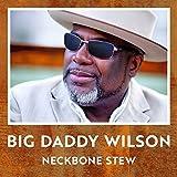Songtexte von Big Daddy Wilson - Neckbone Stew