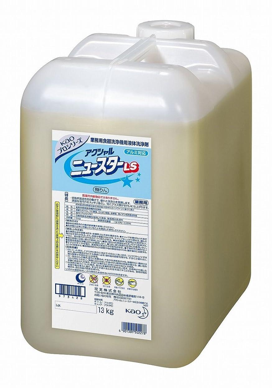 理容師部門クリスチャン花王アクシャルニュースターLS13kg  2本セット