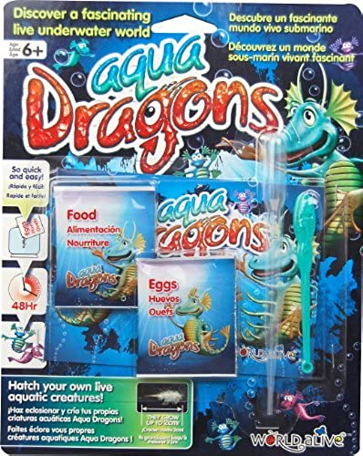 Aqua Dragons Food Egg Refill Pack by ID Toys (Montreal)