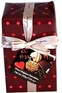 Bruyerre Assortment of Finest Belgian Chocolates 7.05 Oz Holiday Gift Box