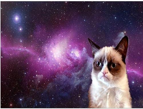 Felices compras XIGZI Animal Gato decoración del del del hogar Bordado de Diamantes Pintura Bricolaje 5D Punto de Cruz Regalo sin Marco  mejor marca