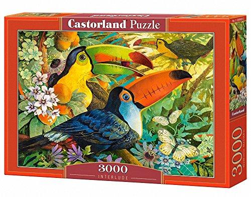 Castorland Interlude 3000 pcs Puzzle - Rompecabezas (Puzzle rompecabezas, Flora & fauna, Niños y adultos, Niño/niña, 9 año(s), Interior) , color/modelo surtido