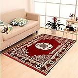 DAILZ Ethnic Velvet Touch Abstract Chenille Carpet - 55'x80', Maroon