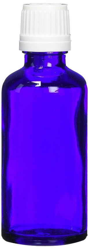 安西パースブラックボロウ排他的ease 遮光ビン ブルー 50ml×10本