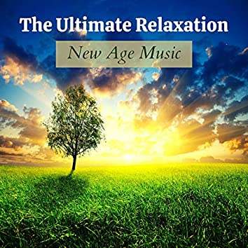 The Ultimate Relaxation New Age Music: Healing Therapy, Rain Sounds, Ambient Music, Amazon Rainforest