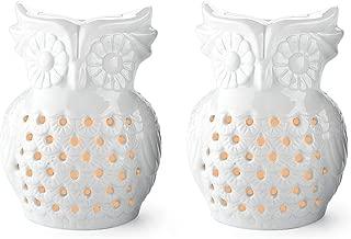 ceramic owl oil burner