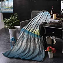 GAJIOE DIY Printing Blanket Modern Sofa Camping Reading car Travel Central Park Forest W70 xL70