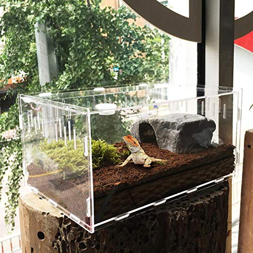 HoneybeeLY - Terrario de acrílico Transparente para Reptiles, hábitat, cría de Lagarto, araña, Serpiente, Rana, 29 cm x 19,6 cm x 15 cm