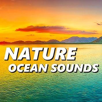 Nature Ocean Sounds