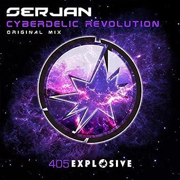 Cyberdelic Revolution