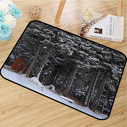 hengshu Outhouse Inlet Outdoor Door mat Winter Forest in Snow with Little Cute Barn Lumberjack Shed Art Photo Catch dust Snow and mud W23.6 x L35.4 Inch Dark Green and White