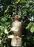 ZILIN Hawk Decoy for Bird Control and Protect Your Garden and Yards from Birds and Pests