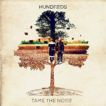Tame the Noise