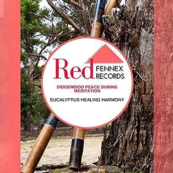 Didgeridoo Peace During Meditation - Eucalyptus Healing Harmony