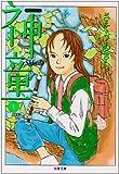 神童 (1) (双葉文庫―名作シリーズ)