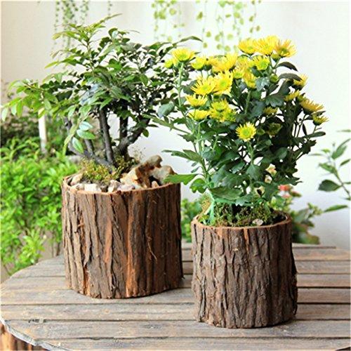 YANZHEN Retro macetas de madera, los tocones ecológicos originales, multi-carnes planta ollas Decoración para el hogar ( Tamaño : 12*13cm-2 piece )