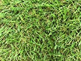 Zaragoza 30mm Pile Height Artificial Grass | Choose from 47 Sizes on this Listing | Cheap Natural & Realistic Looking Astro Garden Lawn | 4 x 2m of Cheap High Density Fake Turf