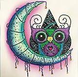 Kit de Pintura de Diamantes 5D Animal en Forma Especial de Diamante Diseño de Búho y Luna...