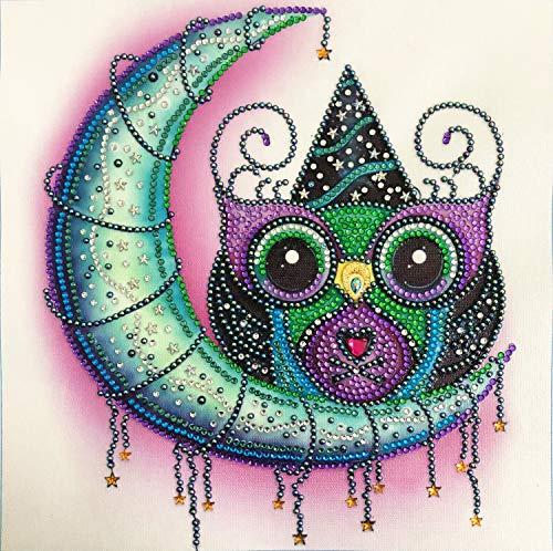 Kit de Pintura de Diamantes 5D Animal en Forma Especial de Diamante Diseño de Búho y Luna Manualidades Cuadros Punto de Cruz Diamante Pintura Numeros Para niños y Adultos 30 x 30 cm