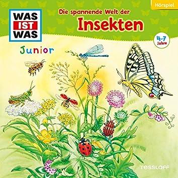 33: Die spannende Welt der Insekten