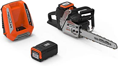 chainsaw with battery and charger