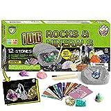 Dr. Daz Excavaciones Rocas Y Minerales Kit De Minerales Excavacion Ciencia Juguetes niños años 7 8 9 10 Geologia Piedras