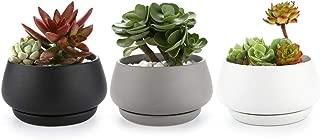 T4U 4 Inch Succulent Pots/Plant Pots Indoor, Matte Obalte Ceramic Bonsai Pots Cactus Flower Pots with Porcelain Tray for Desk, Windowsill, Home & Office Decor-Full Color, Pack of 3