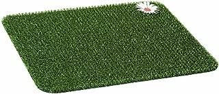 Best grass scraper machine Reviews