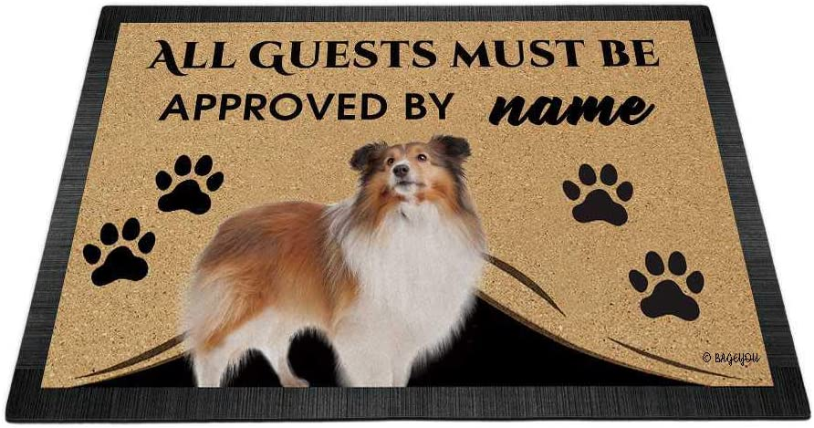 BAGEYOU All Guests Must Super special price be Approved Dog with My Max 43% OFF Doormat She Love