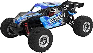 Best brushless rc buggy Reviews
