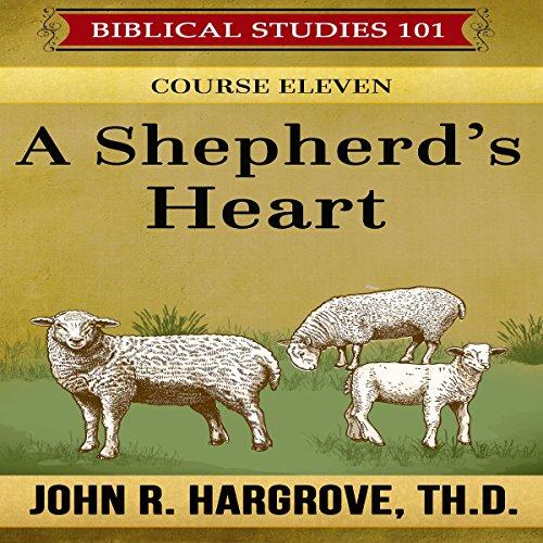 A Shepherd's Heart audiobook cover art