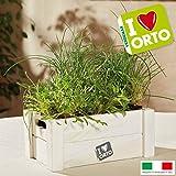 Caja decorativa para hierbas de cocina, caja de madera con semillas de humo ahumado, 26 x 16 x 11 cm