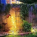 KJSDHAE Lámpara de luz LED para decoración de jardín con diseño de estrella, puede riegar LED, regadera LED, lámpara de estrella centelleante para fiesta, hogar, jardín, dormitorio, patio