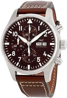 IWC Pilot Antoine de Saint Exupery Chronograph Mens Watch IW377713